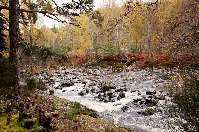 The River Orrin above the Falls of Orrin