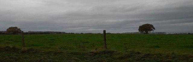 Farmland from Newcastle Road