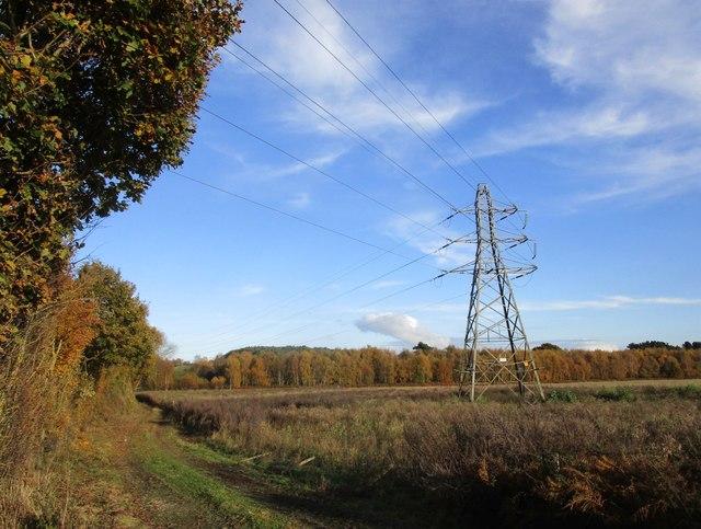 Pylon near Salterford Dam