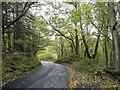 NZ0548 : The road down to Comb Bridges by Robert Graham