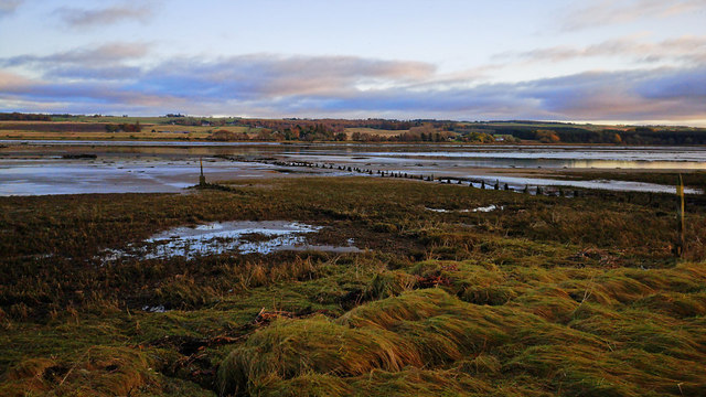 Beside the Cromarty Firth