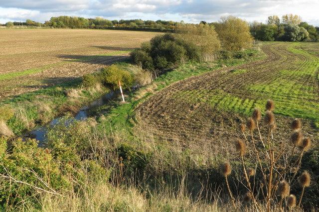 A Nene tributary