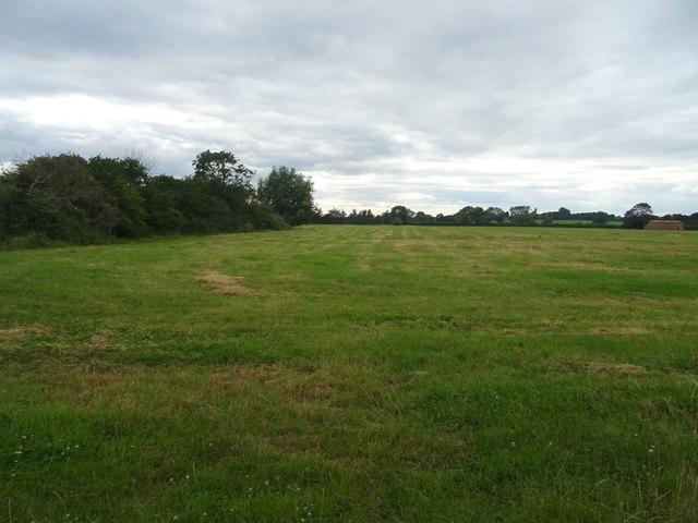 Cut silage field near Ballickacre Farm