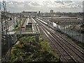TQ3592 : Meridian Water railway station, Greater London by Nigel Thompson