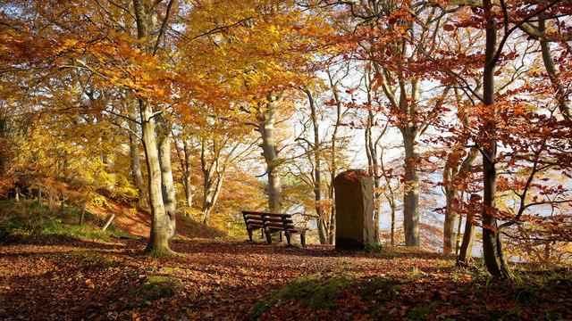 The Brahan Seer Stone, Craig Wood