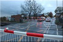 TL4197 : March level crossing by David Howard