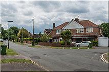 TQ1556 : Cannon Grove by Ian Capper