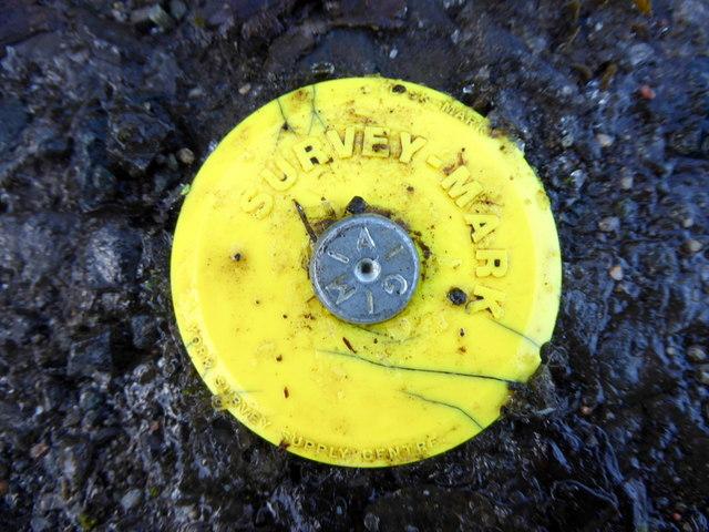 Survey mark along Dreenan Road
