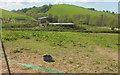 SS5624 : Farm buildings near Portford Cross by Derek Harper
