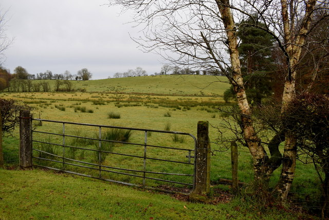 Gate, Letfern