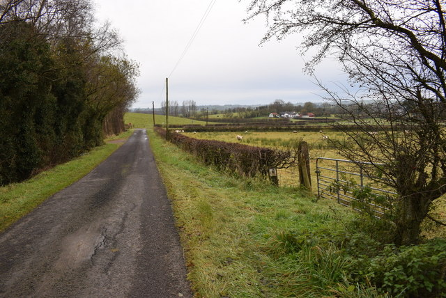 Rosaleen Road, Letfern