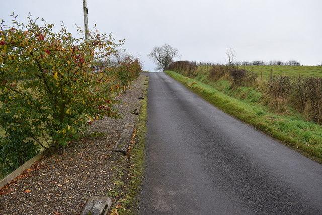 Letfern Road, Letfern