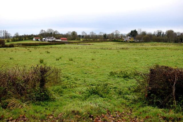 An open field, Letfern