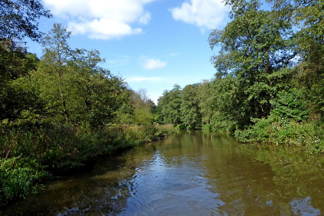 River Churnet by Consall Wood in Staffordshire