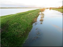 TL4279 : Footpath on the river bank at Sutton Gault - The Ouse Washes by Richard Humphrey