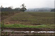 SO8386 : Field near Enville by Bill Boaden