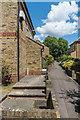 TQ1656 : Fairfield Walk by Ian Capper