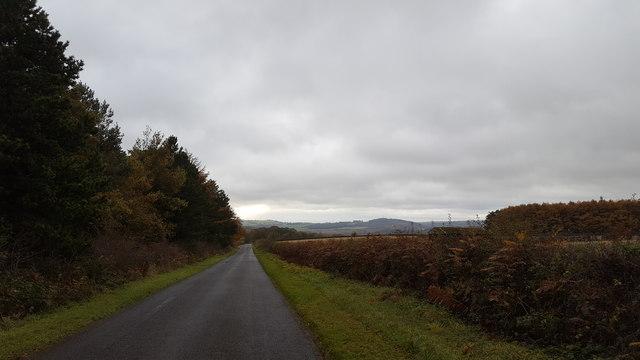 Beside Moor Wood