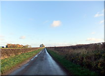 SE9446 : Minor road towards Holme on the Wolds by David Brown