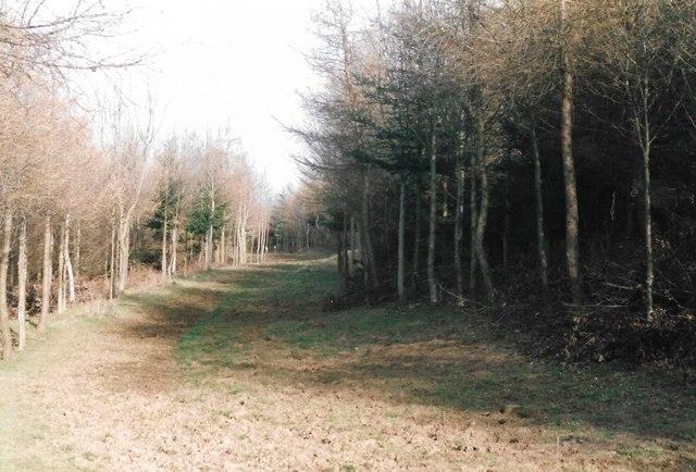 Dalby Hills Permissive Path