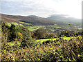 S8147 : Upland Pasture by kevin higgins
