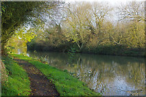 SP8828 : Grand Union Canal below the Soulbury Locks by Stephen McKay