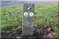 NS6113 : Trail Sign in New Cumnock by Billy McCrorie