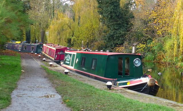 Narrowboats moored along the canal