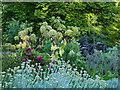 NS5667 : Herb garden in Glasgow Botanic Garden by Stephen Craven