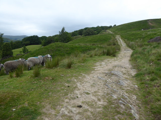 The Pennine Bridleway Mary Towneley loop near North Hollingworth Farm