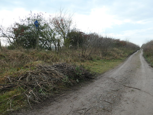 Passing place on a restricted byway, Frodsham Marsh