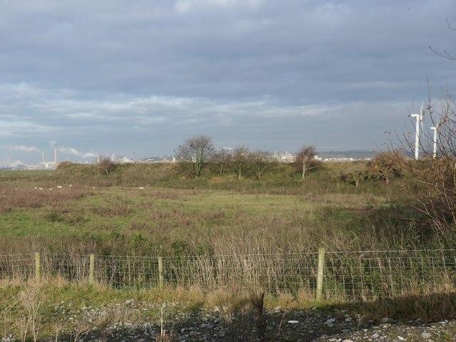 Earth wall, Frodsham Marsh