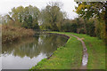 SP8342 : Grand Union Canal north of Stantonbury by Stephen McKay