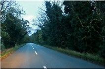 TF4503 : March Road before Friday Bridge by David Howard