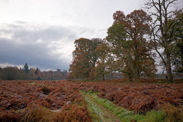Footpath beside the River Beauly