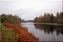 NH5143 : River Beauly near Castle Hill by Julian Paren