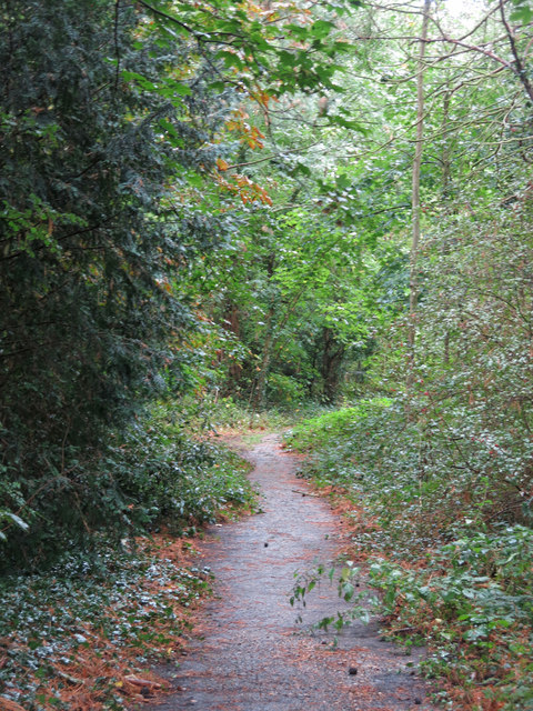 Path in woodland north of Carpenders Park Cemetery