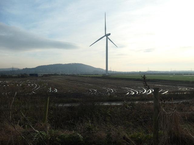 Wind turbine, Lordship Marsh