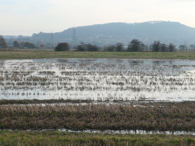 Flooded field, Lordship Marsh
