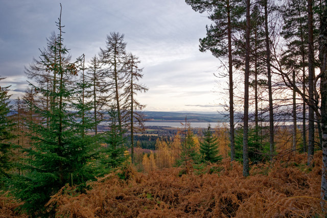 The Cromarty Firth seen from the upper flank of Meann Chnoc