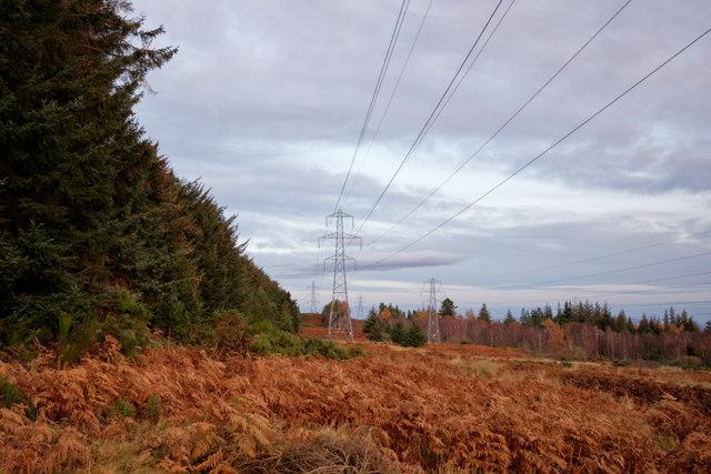 Pylon corridor through the Novar woodlands