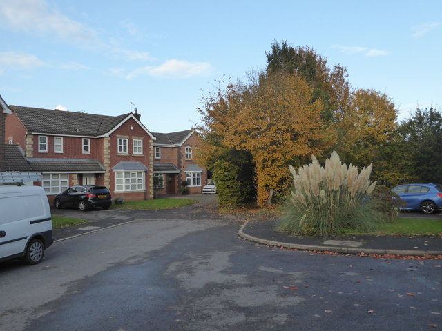 The end of Bearcroft Avenue, Great Meadow