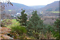 NO0143 : View from Polney Crag, Dunkeld by Jim Barton