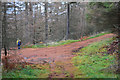 NO0044 : Track junction in Tayside woodland by Jim Barton