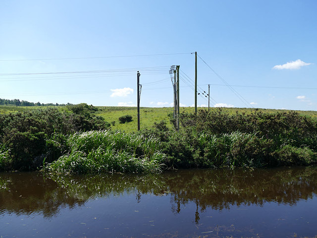 Electricity poles by the canal