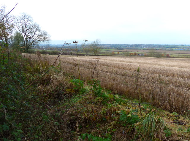 Farmland next to the canal