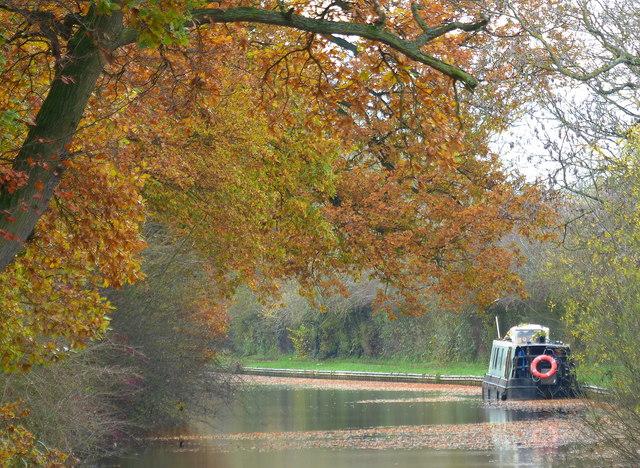 Narrowboat moored along the canal