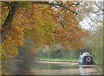 SP7389 : Narrowboat moored along the canal by Mat Fascione