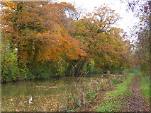 SP7289 : Towpath along the Market Harborough Arm of the Grand Union Canal by Mat Fascione