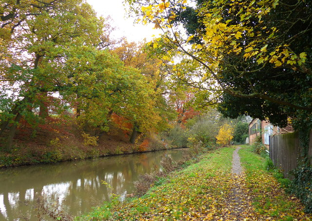 Towpath along the Market Harborough Arm of the Grand Union Canal